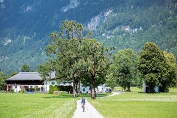 Alpines Ammertal